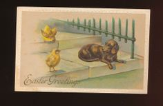 DACHSHUND Puppy Dog Meets EASTER Chicks Postcard EMB-kkk798 #Easter
