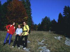 Une image de Die Twannbachschlucht Dolores Park, Images, Travel, Mont Blanc, Viajes, Trips, Traveling, Tourism, Vacations