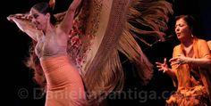 El flamenco, un arte declarado Patrimonio Inmaterial de la Humanidad por la UNESCO