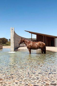Merrick Stables Australia ... Amazing!