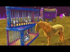 Craziest Ever Star Stable Online Horse Video Game Let's Play Star Stable Horses, Horse Star, Set Honey, Horse Videos, Star Wars, All About Horses, Horse Tips, Stars At Night, Lets Play