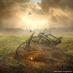 Amazing Photo Manipulations by Even Liu