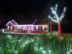 Search for houses on the Tour of Lights in Tallahassee, Florida