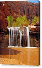Waterfall In Coyote Gulch Utah Acrylic Print by Utah Images