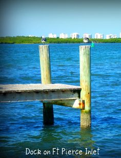 Dock on Fort Pierce Inlet - photo by Marcy Brennan