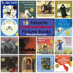 Last month, I mentioned taking a Children's Lit class in college. In that class, I had to read 75 award-winning children's books. Twenty-five of them had to be Newbery Medal winning books. I shared...