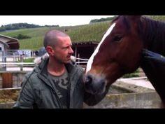 IFEEL Veganmania tour 2013 @ Winterthur, Switzerland & visit to animal sanctuary Stinah. http://www.MusicIFEEL.com. Help Stinah: http://www.Stinah.ch