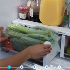 Kitchen Storage Hacks // #kitchen #organization #hacks #refrigeratorhacks #Nifty