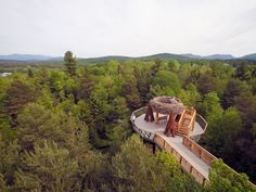 Wild Walk is upstate New York's answer to the High Line, 40 feet above the forest floor | Inhabitat - Sustainable Design Innovation, Eco Architecture, Green Building