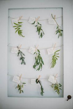 Botanical escort cards
