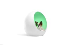 SkyMall Serenity Dog Pod- Treat your pampered pet to the ultimate luxury experience by having them float away on a cloud like bed into a bliss state with calming color changing light. Alberto Frias the pod designer of Men in Black III and inventor of the original pod bed. The pods elliptical exterior blocks 90% of outside noise helping your pet to sleep. #SerenityPetPod #SerenityDogPod #PetPod #DogPod #DogBed #SkyMallSerenityPetPod #SkyMallDogBed #PetCocoon #DogCocoon #LuxePetPod #LuxeDogBed