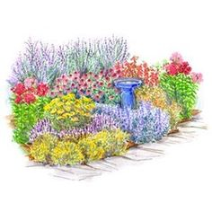TOUGH AS NAILS Perennial Garden  Get this look for approx. $165  3 Russian Sage, 2 Tall Pink Phlox, 1 Purple Coneflower, 1 Coral Bells, 1 Coreopsis, 3 Salvia,  1 Catmint and 3 Yellow Gaillardia