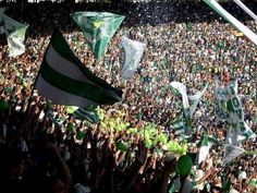 Nação Esmeraldina e FESTA... Serra Dourada lotado, só verdes
