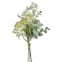 If you're after realistic, low maintenance plants, you will love our artificial plants and flowers. Fern Bouquet, Artificial Flowers And Plants, Low Maintenance Plants, Flowers For You, Missing Piece, Different Plants, Furniture Covers, Ferns, Potted Plants