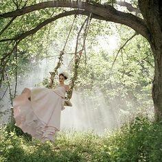 A swing in a secret garden