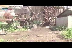 Саханку стерли с лица Земли.  Под обстрелами гибнут домашние животные, разорены огороды, разрушены дома – как уверяют жители поселка, ВСУ стреляют прицельно. По словам жителей поселка, обстрелы начинаются внезапно, в любое время суток, и тогда люди спешно прячут