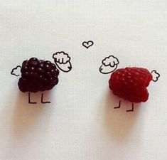 berry cute sheep