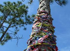 Men and women, young and old came to the Cameron Art Museum this weekend to Yarn Bomb the CAM in the name of religious diversity. The outdoor fiber art event was in conjunction with the museum's exhibition of the Cape Fear Spirit Quilt, sponsored by...