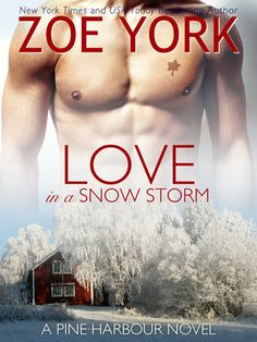Love in a Snow Storm Pine Harbour #2 by: Zoe York  I have been introduced to both a new author and a series I have never read before. This brief glimpse allowed me to take the time and try out an author that I had never read before. I enjoyed the book and am looking forward to reading the rest of the series.