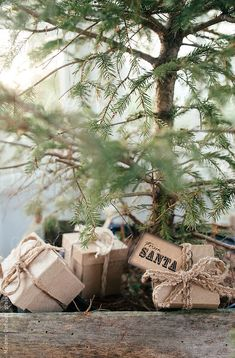 Kendrasmiles4u - Christmas tree  By meldefazio Available to license...