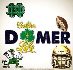 Golden Domer 4 Life, University of Notre Dame, ND Notre Dame Football, Nd Football, College Football Teams, Sports Teams, Irish Fans, Go Irish, Notre Dame Wallpaper, Notre Dame Campus, Noter Dame