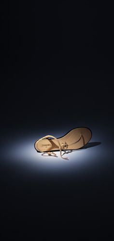 e8e5e9295 CHANEL Fashion - Sapatos. Chanel SapatosBegeCouroPretoChanel 2015Bolsas Sapato