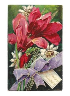 BIRTHDAY Postcard Red Lilies White Daisy Purple Bow Vtg picclick.com