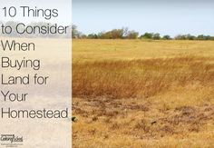 When we began to consider our move to the country, purchasing land was intimidating. Neither of us (my husband nor I) had made that kind of purchase before. While there are many things to consider when purchasing an acreage, here are ten important things that we learned (some the hard way) along the