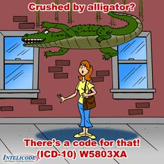 Crushed by an Alligator?  There's a code for that!  ICD-10 W5803XA.  See more funny code illustrations at http://intelicode.com  - OR - http://www.facebook.com/intelicodesoftware