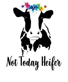 not today heifer cow svg images - Saferbrowser Yahoo Image Search Results Cricut Air, Cricut Vinyl, Silhouette Projects, Silhouette Design, Heifer Cow, Cricut Craft Room, Cute Poster, Cow Art, Cricut Creations