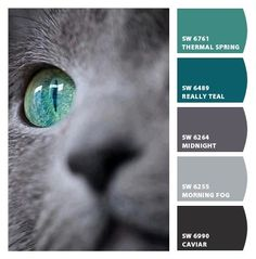 Cat's Eye beautiful combo to incorporate with gray LOVE IT!!!!!!!!!!!