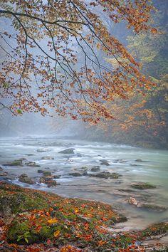 Vintgar gorge, Slovenia, Nature, Landscape