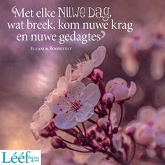 Afrikaanse Quotes, Eleanor Roosevelt, Verses, Gift Ideas, Songs, Creative, Scriptures, Lyrics, Song Books