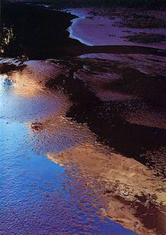 Eliot Porter • Reflections in pool, Indian Creek, Escalante River, 1965