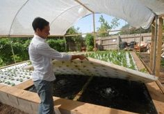 An article about kids from my alma mater pioneering aguaponics agriculture.  Inspiring!