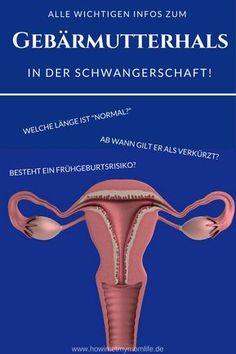 Der Gebärmutterhals in der Schwangerschaft? Welche Gebrmutterhalslänge ist normal, ab wann gilt der Gebärmutterhals als verkürzt und wann besteht das Risiko einer Frühgeburt. Alles wichtigen Infos gibt es in diesem Artikel zum Thema Schwangerschaftsvorsorge und Schwangerschaftsinformationen. #schwangerschaftsvorsorge #gebärmutterhals #gebärmutterhalsverkürzung #frühgeburt