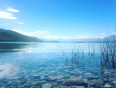 Crystal clear day at Lake Tekapo, New Zealand