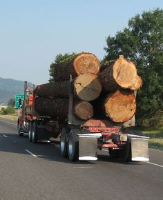 Logging truck on I-5 in Oregon by Countryham NY, via Flickr