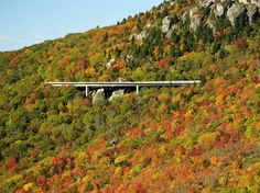 """""""The Linn Cove Viaduct hugs the face of Grandfather Mountain and is recognized internationally as an engineering marvel. """""""