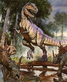 Tyrannosaurus; Late Cretaceous (67 - 66 Ma); Theropod; Discovered by Barnum Brown, 1900-1902; Described by Osborn 1905;  Styracosaueus