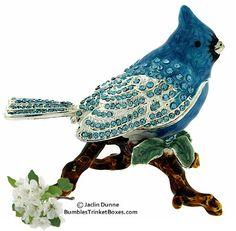 Trinket Box: Blue Jay Perching on Branch