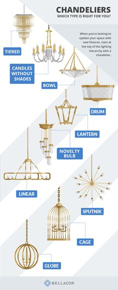 Looking for a new ceiling light fixture? Shop for chandeliers starting with the most popular types of chandeliers from sputnik chandeliers to traditional tiered chandeliers. Glass Globe, Linear Chandelier, Types Of Lighting, Chandelier Lighting, Starburst Chandelier, Light Fixtures, Shop Lighting, Industrial Chandelier, Chandelier