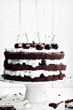 Delicious Black Forest Cocoa Cake Recipe