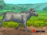 Slot Online, Horses, Animals, Animales, Animaux, Animal, Animais, Horse