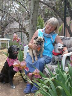 Kindred Spirits: sanctuary, hospice for senior animals -- Santa Fe, New Mexico.