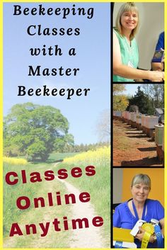 Learn beekeeping with online beekeeping classes. Learn anytime on your own schedule. Then join our closed Facebook group for additional help. Beekeeper Charlotte at Carolina Honeybees #beekeeperequipment #beekeepingbusiness