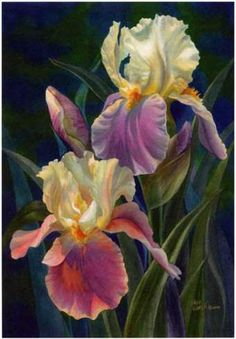 tole painting books on iris flowers - Yahoo Image Search Results Have learned to treasure Irises, a rather forgotten flower. lovely as orchids and roses Irises - watercolor by Reiko Hervin I would love to have this on my wall and the flowers in our garden Iris Painting, Watercolour Painting, Watercolor Flowers, Painting Flowers, Flower Paintings, Tole Painting, Watercolors, Paintings I Love, Beautiful Paintings