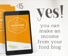 Best How to Monetize your Food Blog Book Review » My Family Mealtime