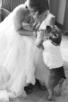 Bride with her Dog   photography by http://meganpomeroyphotography.com