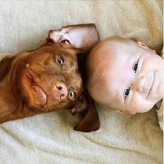 Freekibble Kids Love Animals Slideshow 4